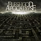 Pop CD, Fleshgod Apocalypse - Labyrinth[002kr]
