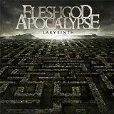 Pop CD, Fleshgod Apocalypse - Labyrinth[002kr]