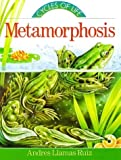 img - for Metamorphosis (Cycles of Life Series) by Andres Llamas Ruiz (1997-03-03) book / textbook / text book