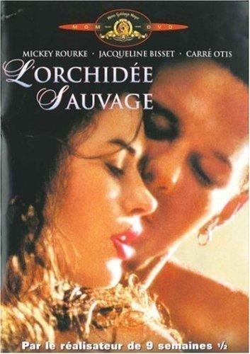 lorchidee-sauvage