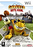 echange, troc Garfield gets real