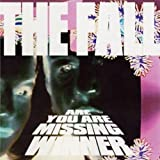The Fall Are You Are Missing Winner