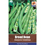 Vegetable Seed Collections - Broad Beans (Bunyards Exhibition)