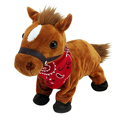 Buy Pet HorseProducts Now!
