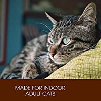 Holistic Select Natural Dry Cat Food