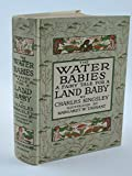 img - for The water babies book / textbook / text book