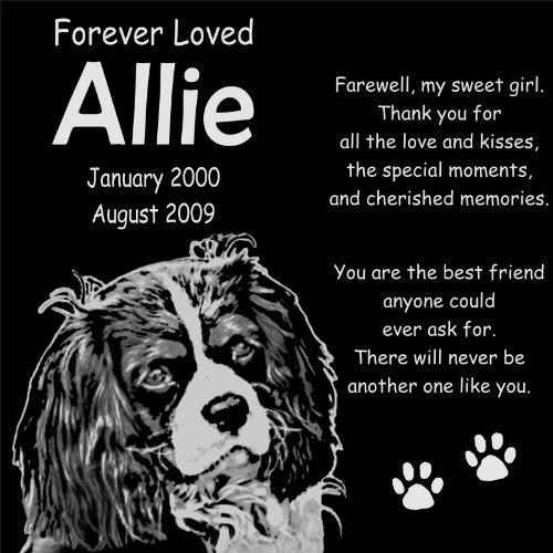 "Personalized Cavalier King Charles Spaniel Dog Pet Memorial 12""X12"" Custom Engraved Black Granite Grave Marker Head Stone Plaque All1"