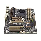 ASUS 990FX - 2.0 - motherboard - ATX - Socket AM3+ - AMD 990FX