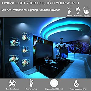 Litake LED Strip 16.4ft SMD 5050 300LEDs Outdoor Waterproof Color Changing RGB Flexible Strip Lights Kit with Power Plug 44Keys Remote Control for Christmas Festival Party Home Garden Decoration