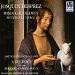 Missa Gaudeamus  /  Motets � la Vierge