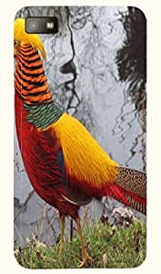 Beautiful multicolor printed protective REBEL mobile back cover for Blackberry Z10 D.No.N-T-3770-BBZ10