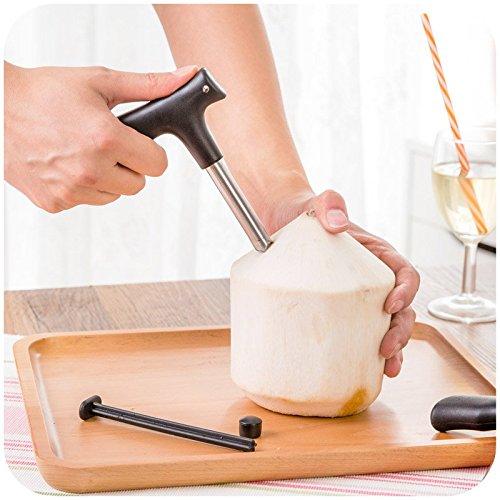 yijia Outil d'ouverture de noix de coco-Robinet (Punch) Couteau Décapsuleur pour brut Coco Eau jus-Une paille trou