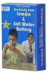 Lemon and Salt Water Battery