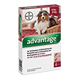 ADVANTAGE 250 Lösung f.Hunde 10-25 kg 4 St Lösung