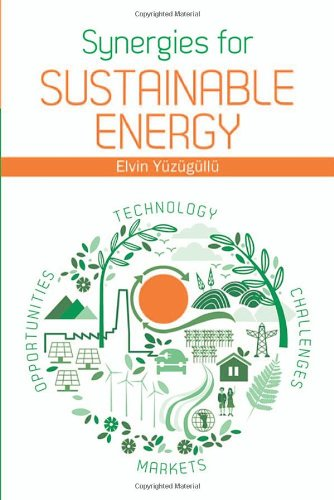 Synergies For Sustainable Energy (Artech House Power Engineering)