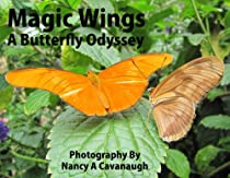 Magic Wings: A Butterfly Oydssey