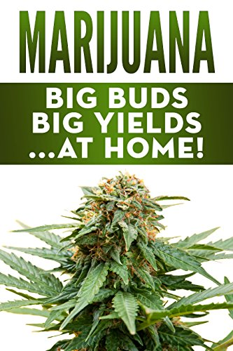 Marijuana: Big Buds, Big Yields...At Home! (How To Grow Your Own Cannabis)