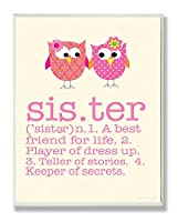 The Kids Room by Stupell Definition of Sister with Pink Owls Rectangle Wall Plaque