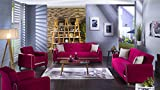 Fabio Plato Fuschia 2 PC Living Room Set (Sofa Sleeper and Loveseat)