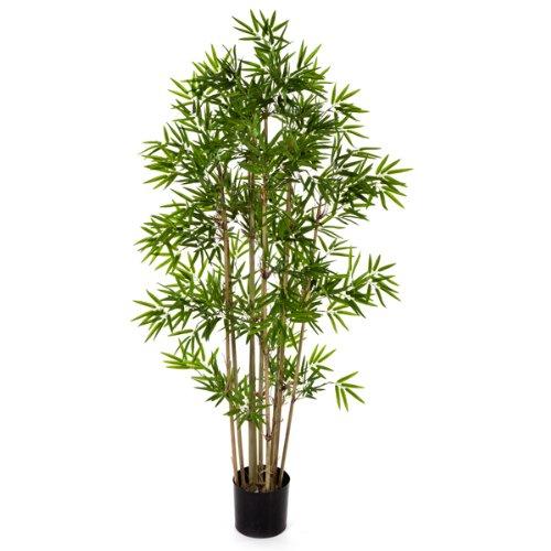 Eur 67 90 for Plantes en plastique exterieur