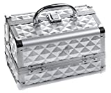 SHANY Cosmetics Silver Makeup Train Case with Mirror, 48 Ounce