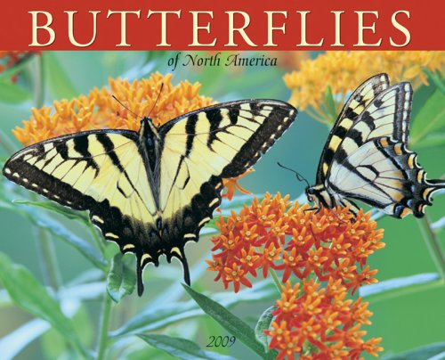 Butterflies of North America 2009 Calendar
