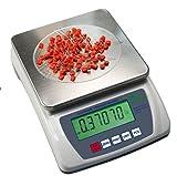 Árbol de laboratorio equilibrio HRB3001 3000 G/0,1 G peso Digital de precisión portátil con función de tara farmacéutica biología comercial Industrial Warehouse Home Kitchen Scientific joyas báscula de cocina