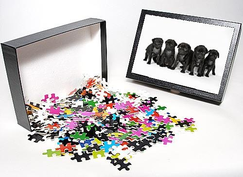 Photo Jigsaw Puzzle Of Dog. Five Black Pug Puppies (6 Weeks Old) front-1027297