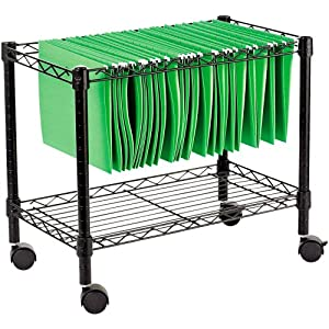 Click to buy Rolling File Carts from Amazon!