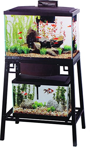Spiffy pet products fish products for 55 gallon fish tank petco