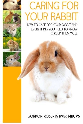 Caring For Your Rabbit: How to care for your Rabbit and everything you need to know to keep them well