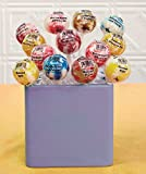 13-Pc. Dessert Favorites Gourmet Jumbo Lollipop Sets