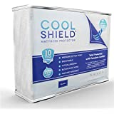 Cool Shield No Allergy Waterproof Mattress Protector - Breathable Terry Cover Protects Against Dust Mites, Allergens, Bacteria, Mold and Fluids - See Reviews - Machine Washable Mattress Protector - Best 10-yr Guarantee - Size: Queen (60 in x 80 in)