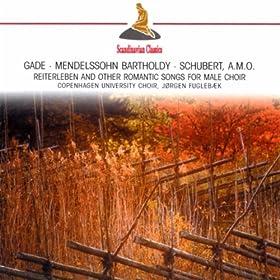 6 Lieder, Op. 50: No. 3. Sommerlied
