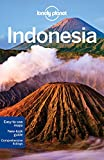 img - for Lonely Planet Indonesia (Travel Guide) book / textbook / text book