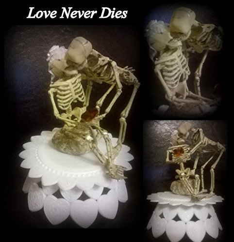 Love Never Dies Wedding Cake Topper (Fun) (Cake Decoration Accesories compare prices)