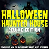 Halloween Haunted House (Continuous Mixed Terror Version)