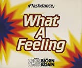 Bjorn Again Flashdance What A Feeling