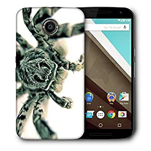 Snoogg Black Spider Printed Protective Phone Back Case Cover For LG Google Nexus 6