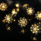 M&T TECH 20 Double Lotus Solar String Lights for Outdoor Garden Patio Christmas Party Wedding-Warm White