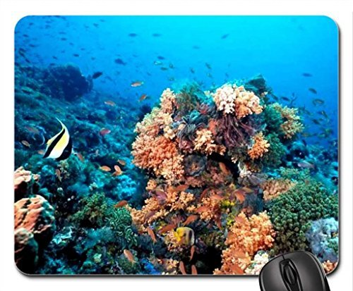 Reef Mouse Pad, Mousepad