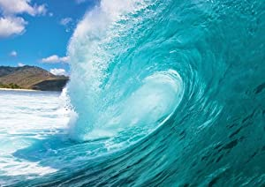 Jp London Md4a114 Hang Ten Ocean Surf Removable Full Wall