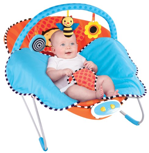Why Should You Buy Sassy Cuddle Bug Bouncer, Whimsical Bumble Bee