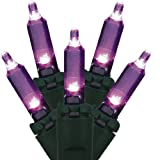 Set of 100 Purple LED Mini Christmas Lights - Green Wire