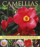 img - for Camellias: An Illustrated Guide To Varieties, Cultivation And Care, With Step-By-Step Instructions And Over 140 Beautiful Photographs book / textbook / text book