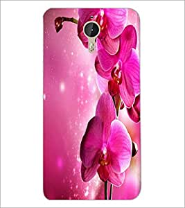 PrintDhaba Flower D-2183 Back Case Cover for LETV LE 1 PRO ULTRA (Multi-Coloured)