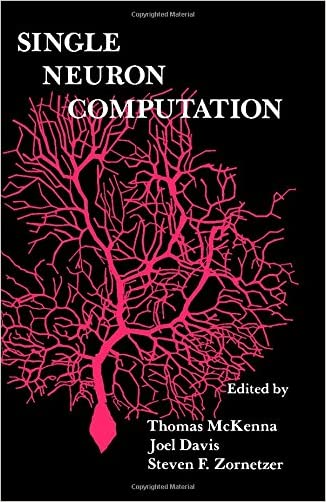 Single Neuron Computation (Neural Networks: Foundations to Applications)