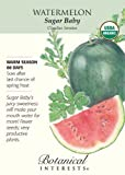 Sugar Baby Watermelon Seeds - 1.5 grams - Organic - Botanical Interests