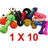 Bumper Selection of Squeaky Vinyl Dog Toys - Pack of 10 - Medium