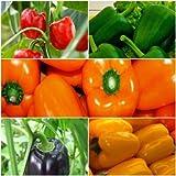 Biocarve Capsicum Vegetable Kit - 5 Packets